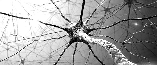 Deconstructing Neuroscience